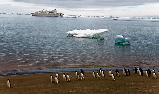 Температура в Антарктиді піднімається за минулі 69 ° F, як повідомляє NOAA, минулого місяця був найгарячішим січнем у світі за січень