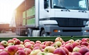 영국과 웨일즈에서 완전히 유기농을 섭취하면 식량 배출이 70 % 증가 할 수 있음