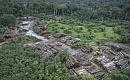 열대 우림과 암초 시스템 얼굴 붕괴