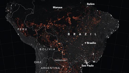 아마존 열대 우림, 귀국