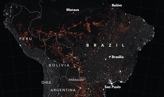 Амазонський тропічний ліс досягає точки повернення