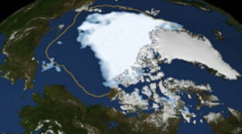 19表示气候变化现在正在自食其力