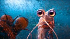 磷蝦損失對極地食物鏈可能是災難性的