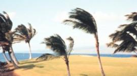 Angin Dagang Menarik Kehangatan yang Hilang Ke Lautan Dalam