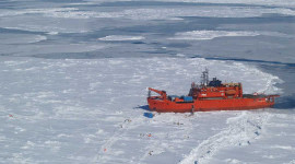 Record High To Record Low: What On Earth Is Happening To Antarctica's Sea Ice?