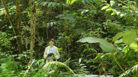 Dr. Letcher in a 15-year-old secondary forest in Costa Rica. Susan G. Letcher