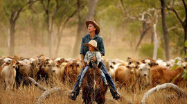 How Australian Farmers Are Adapting To Climate Change
