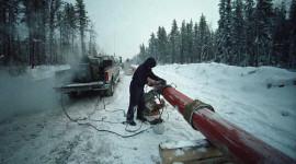 'N Rooi Alert Vir Die Toekoms Arktiese