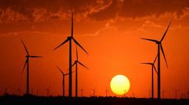 今年可能错过的6积极气候变化故事