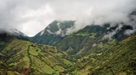 Los bosques nubosos corren el riesgo de secarse por 2060