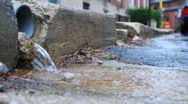 Comment votre jardin pourrait vous aider à mettre fin à l'inondation de votre ville