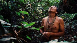 Amazon Fires: Indigenous People Show Fire Can Be Used Sustainably