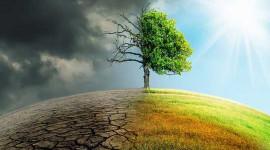 Le rapport sur les terres du GIEC montre que le problème de l'agriculture basée sur le pétrole et non le sol