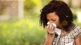 Still Sneezing? Climate Change May Prolong Allergy Season