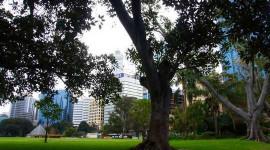 We investeren zwaar in stedelijk groen, dus hoe doen onze steden het?