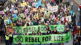 Koruma Bilim İnsanları Olarak, Soyu Tükenmeye İsyan Ediyoruz Ve Dünyadaki Araştırmacılar Bize Katılmalı