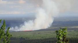 北方的气候变化三连胜:热浪,野火和永冻土解冻