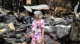 Byna 80% van die Australiërs wat op een of ander manier deur die bosbrande geraak is, toon nuwe opnames