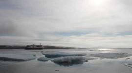 Gemiler İklim Değişikliği ile Kuzeye Taşınırken Gürültü Kuzey Kutbu'nu Korkutuyor