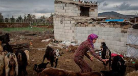 Onko ilmastonmuutos vastuussa konflikteista, joita näemme nykyään ympäri maailmaa?