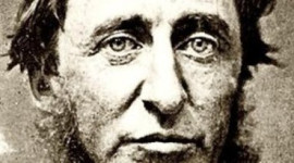 Thoreau's Record Keeping At Walden Pond Give Glimpse Of Changes