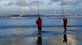 Offshore Wind Hopes For A Livelier Future